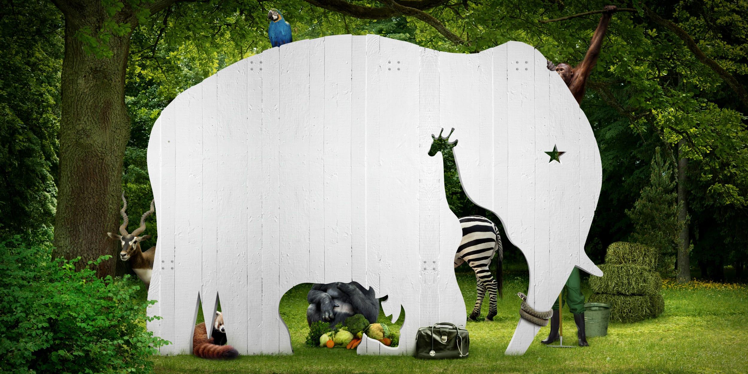 Startslider Zootag