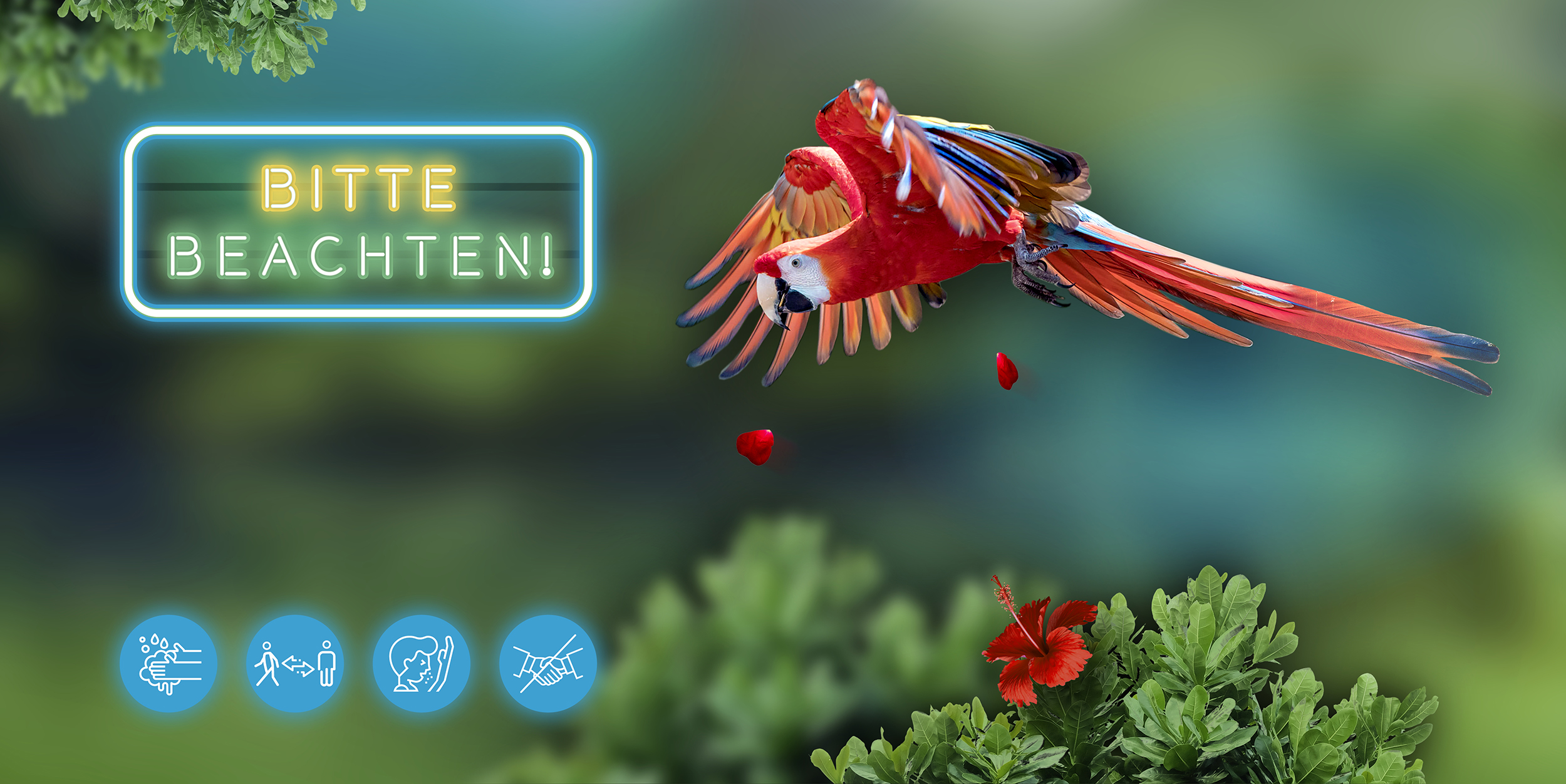 Startslider Kölner Zoo wieder geöffnet NL